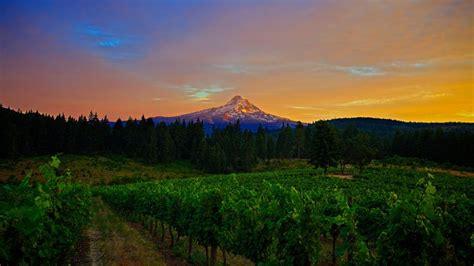 Wallpaper Mountains 4k Hd Wallpaper 8k Field Sunset