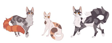 warrior cats rosetail sweetpaw thistleclaw warrior