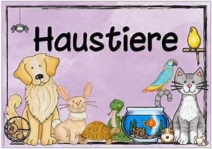 Haustiere Für Kinder : ideenreise themenplakat haustiere heimtiere sachunterricht grundschule haustiere ~ Orissabook.com Haus und Dekorationen