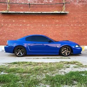 Slammed Mach 1 New Edge Mustang | Mustang cars, New edge mustang, Mustang gt