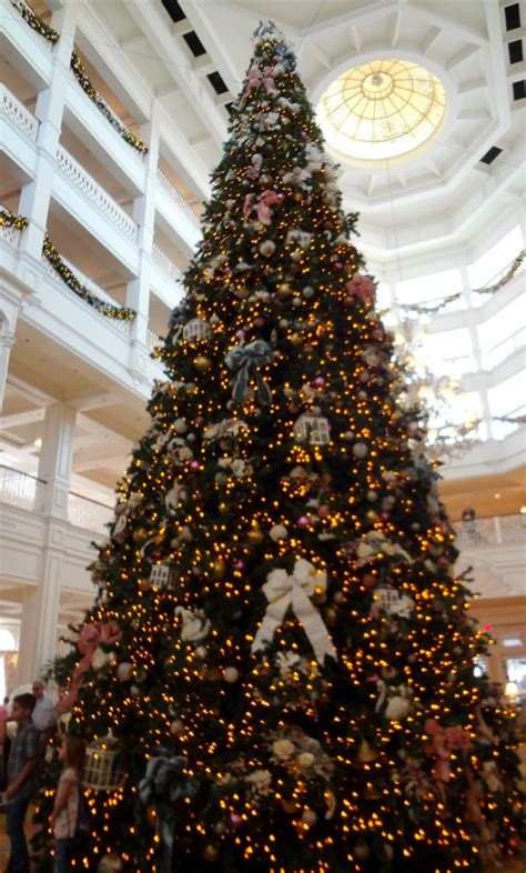 grand floridian christmas tree walt disney world trees in violetlady