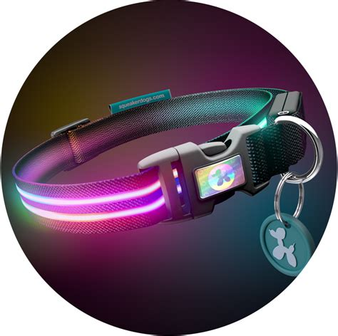light for collar rechargeable light up collars squeaker