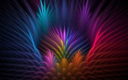 Abstract Colorful Feathers Backgrounds Wallpapers Desktop Mobile