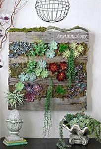Vertikaler Garten Selber Bauen : vertikaler garten mit sukkulenten und echeverien bepflanzt ~ Lizthompson.info Haus und Dekorationen