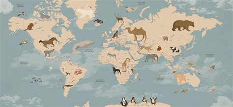 Animal Map Of The World Wallpaper - animals world map mural wallpaper