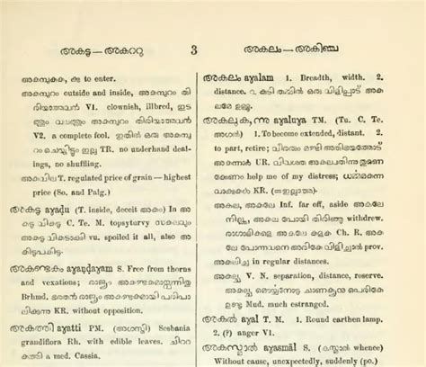 words and what not digitizing a malayalam dictionary
