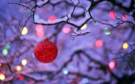 Winter Christmas Wallpaper Backgrounds