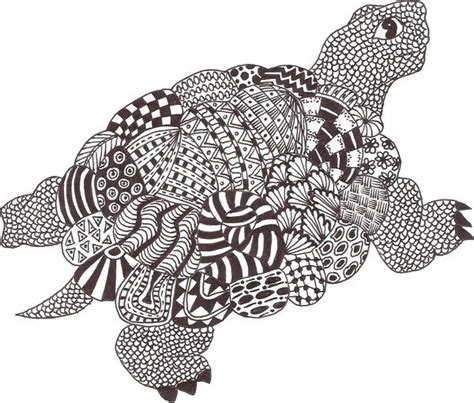 images   zentangle tortoise  zentangle