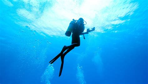 accident taught   scuba diving safety shape