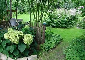 Welche Pflanzen Passen Gut Zu Hortensien : hortensien am garten ~ Lizthompson.info Haus und Dekorationen