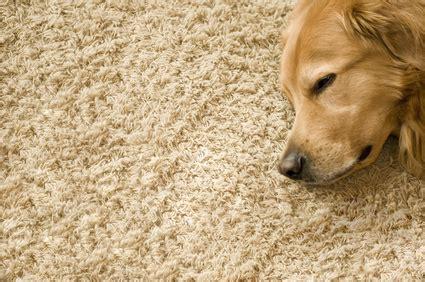 Bodenbeläge Für Fußbodenheizung by Welchen Bodenbelag F 252 R Die Fu 223 Bodenheizung Die