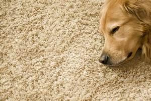 Teppich Für Fußbodenheizung : teppich auf fu bodenheizung geht das gut die ~ Michelbontemps.com Haus und Dekorationen
