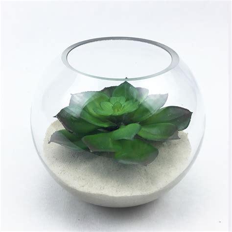 สวนโหลแก้ว Echeverial plant ต้นไม้ประดิษฐ์จัดในแก้วใสทรงกลม