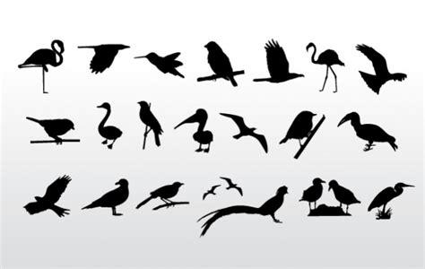 bird silhouette freebies vector graphics