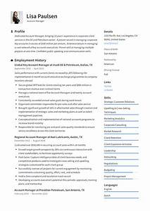 resume examples for it professionals account manager resume writing guide 12 resume examples