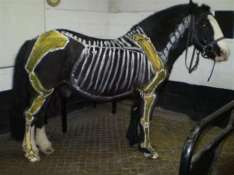inside horses horse angus wiseman golder rob matt painted hall mark david wood