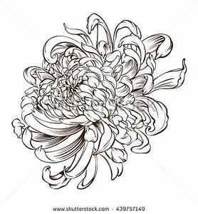 Japanese Flower Tattoo Chrysanthemum Flower Blossoms Stock ...