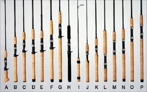 latest fishing rods agility fishing rod  shakespeare