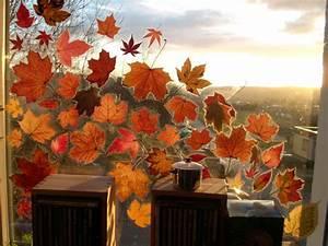 Herbstbasteln Für Fenster : herbst ~ Orissabook.com Haus und Dekorationen