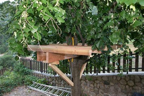 fabriquer une plateforme dans les arbres recherche cabane recherche