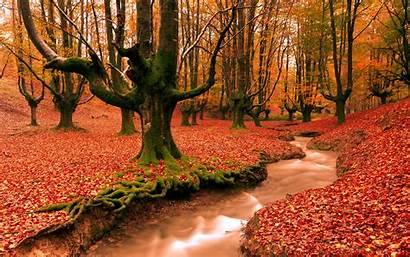 Desktop Autumn Backgrounds Wallpapers Widescreen Wallpapertag