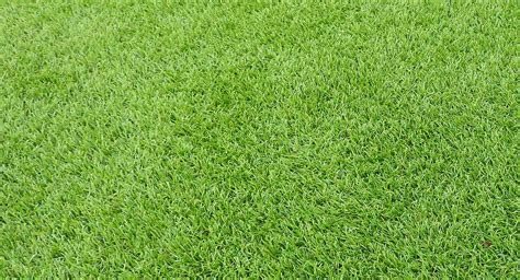 grass lawns artificial grass free measure quote on all synthetic grass