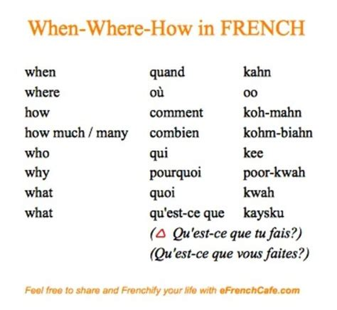 Basic French | Learning French | Pinterest | French