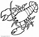 Coloring Pages Lobster Animals Printable Sea Template Print Templates Ocean sketch template