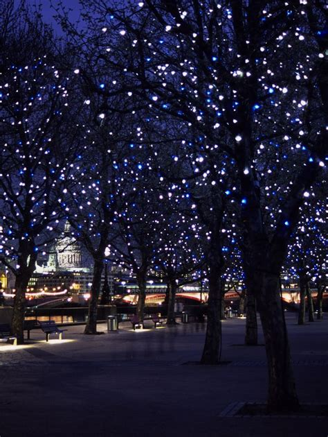 25 best ideas about outdoor tree lighting on