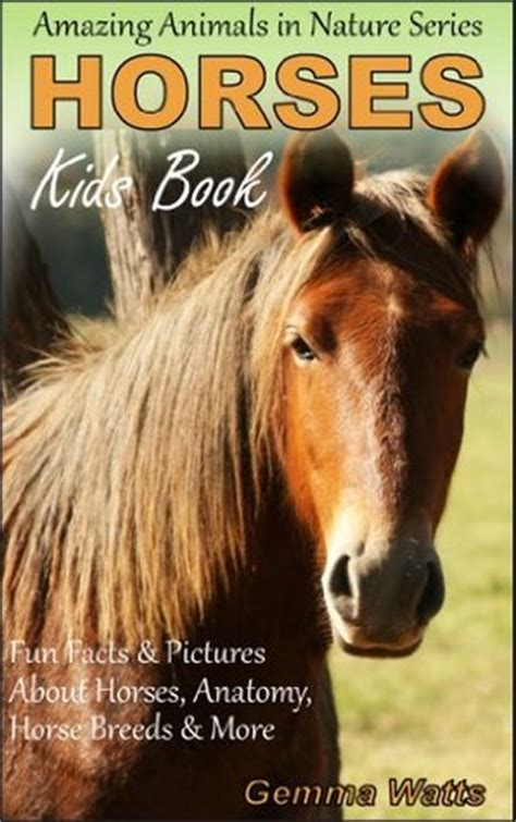 horses  kids book  horses fun facts pictures