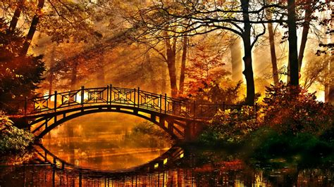 Fall Wallpaper Hd Group Pictures(45