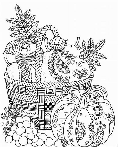 Coloring Autumn Pages Adult Fall Leaves Harvest