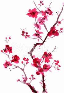 Plum Blossom Painting stock photos - FreeImages.com