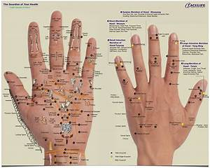 Aculife Hand Acupuncture Manual Pdf
