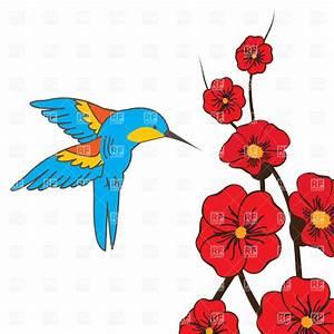 Hummingbird Clipart - Clipartion.com