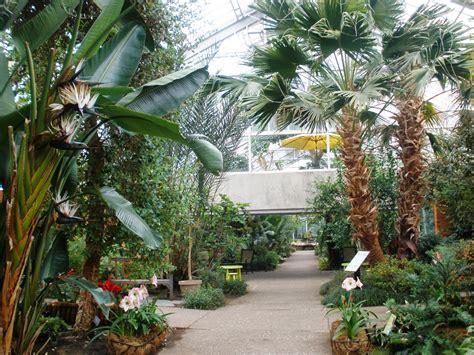 Matthaei Botanical Gardens Conservatory, Ann
