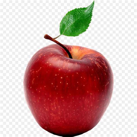 Apple Cartoon png download - 1000*1000 - Free Transparent ...