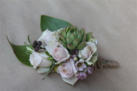 blooms  bethan succulents