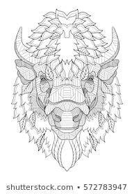 American buffalo head zentangle stylized, vector