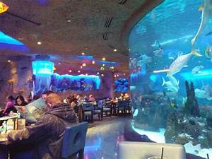 20150215 160502 large jpg Picture of Aquarium Restaurant
