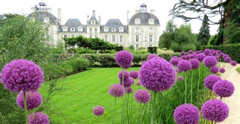 Jardin Cheverny by Parc Du Ch 226 Teau De Cheverny Parcs Et Jardins En R 233 Gion
