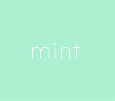 mint the color best 25 mint color ideas on
