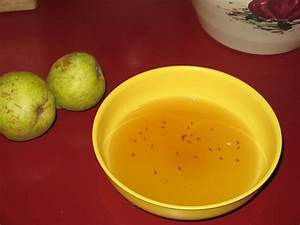 Home Remedy For Fruit Flies How To Get Rid Of Fruit Flies And Gnats