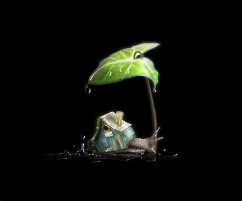 Artistic Wallpapers For Android by Artistic Nature Android Wallpapers 960x800 Hd Wallpaper