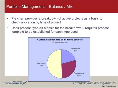 portfolio management   product development