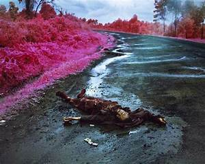 17 Best images about Richard Mosse - The Enclave on ...