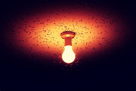 A Cool Night Light