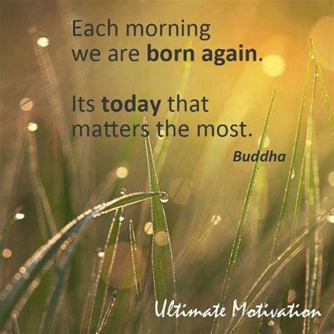 Morning Buddha Quotes Quotesgram. Relationship Quotes Sad With Images. Family Quotes Khalil Gibran. Cute Quotes By Celebrities. Children's Day Quotes In English. Dr Seuss Quotes Experience. Friday Quotes For Her. Short Quotes With Big Words. Tattoo Quotes Peter Pan