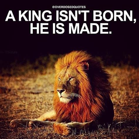 king isnt born    pictures   images