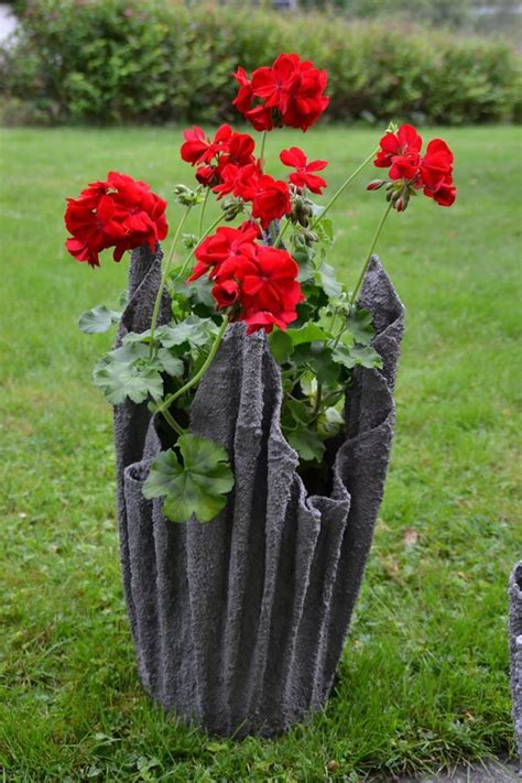 flower pot     towel soaked   thin